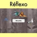Réflexo